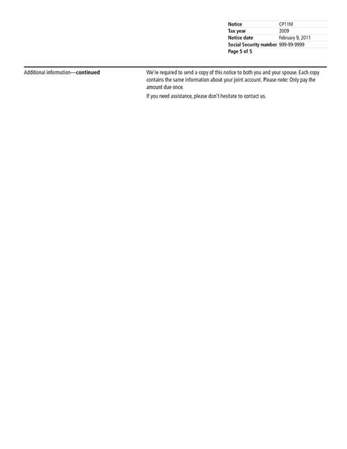 Image of page 5 of a printed IRS CP11M Notice